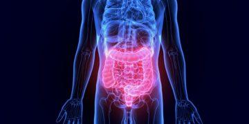 inflammatory bowel disease treatment personalized medicine predictimmune