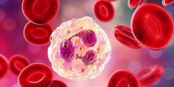 chemocentryx vifor fresenius medical care renal pharma anca vasculitis