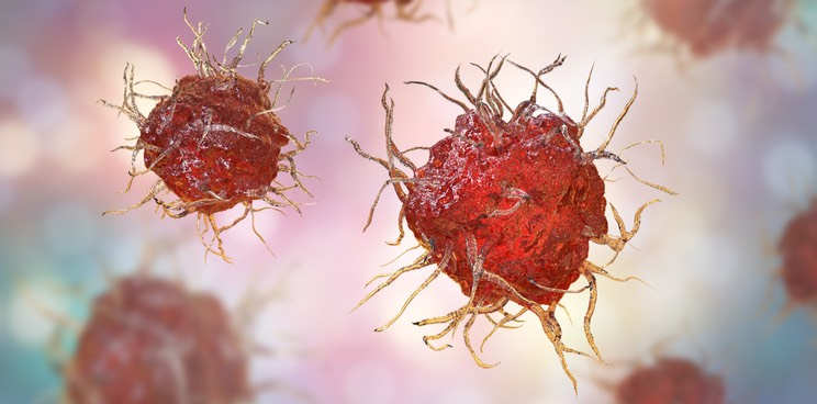 Immunicum S Kidney Cancer Immunotherapy More Than Doubles Recovery In Phase Ii