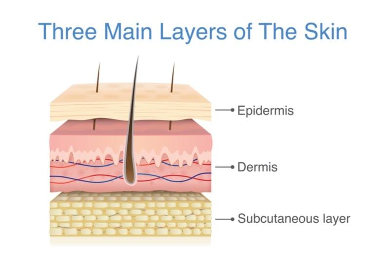 mallinckrodt regenerative medicine skin graft bioprinting