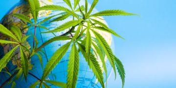 worldwide cannabis, medical cannabis, biotech news