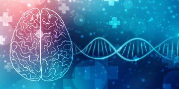 Orchard Therapeutics gene therapy MLD