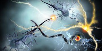 multiple sclerosis genmab geneuro