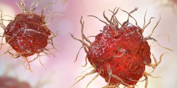 dendritic cells, innate immune system, innate immunity, immuno-oncology, immunology