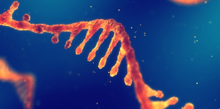 ProQR's RNA Therapy Improves Vision in Untreatable Genetic Blindness