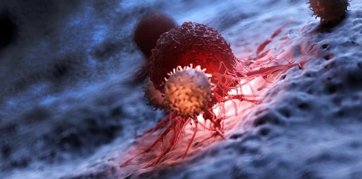 cancer immunotherapy neoantigen