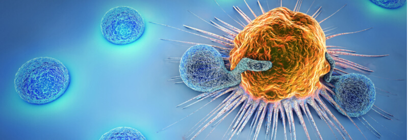 tumor cell, t cells, cancer, biotech