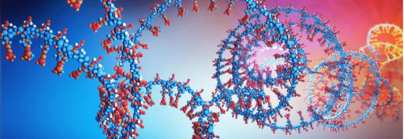 RNA, base editors, mRNA, gene editing, proteome