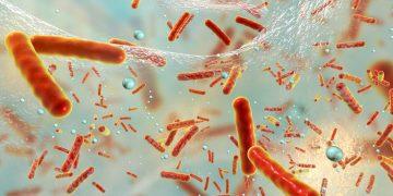 antibiotic resistance iterum therapeutics