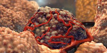 tumor cancer immunotherapy alderaan biotech