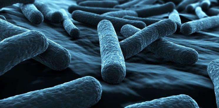 Lasers Used To Make Rapid Antibiotic Resistance Test