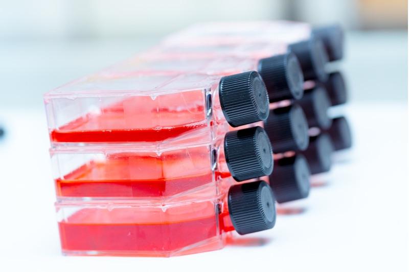 cell culture ori Biotech