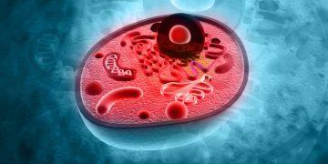 lysosomal storage disorders azafaros rare disease