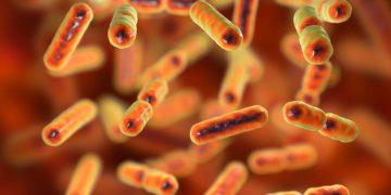 microbiome da volterra