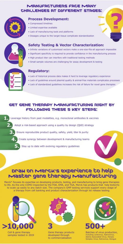 gene therapies, gene therapy manufacturing