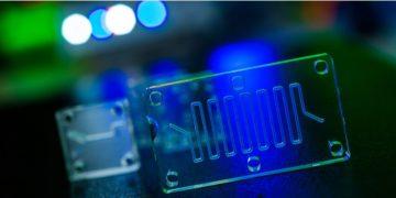 CN Bio - organ on a chip