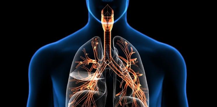 coronavirus COVID-19 Europe biotech lungs