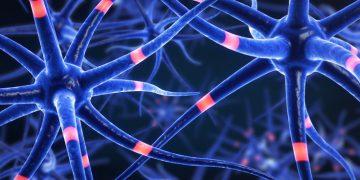 multiple sclerosis neuron sheath medday Pharma