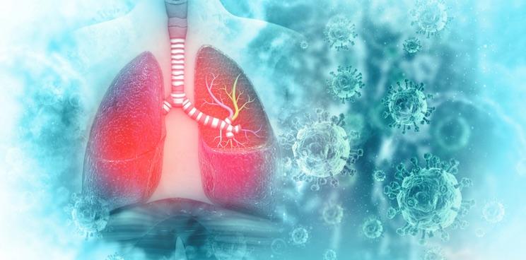 lung coronavirus ethric neurimmune