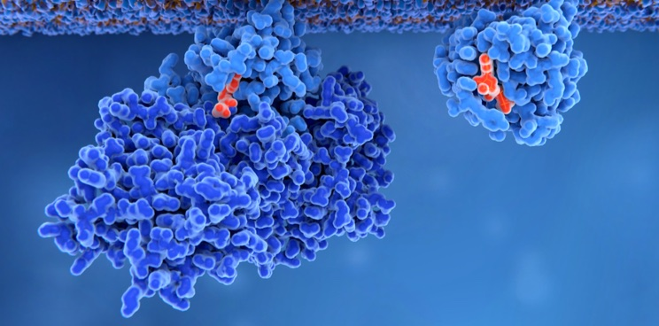 Amphista Therapeutics Is Silencing Disease Proteins to Treat Cancer