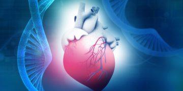 gene therapy cardiac rare disease biomarin dinaqor