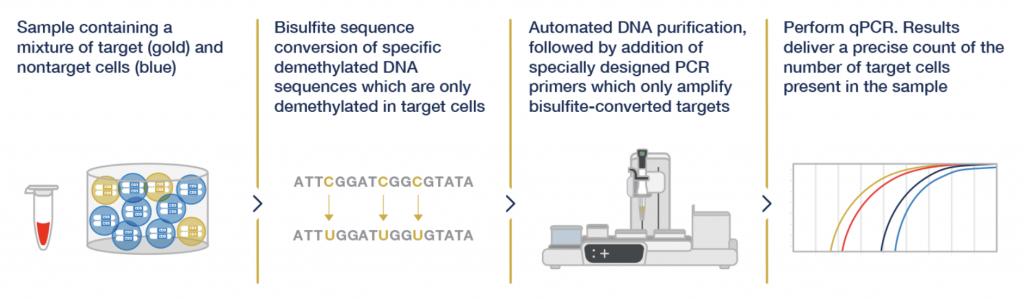immune cell monitoring, immune cell, Epiontis, Precision for Medicine