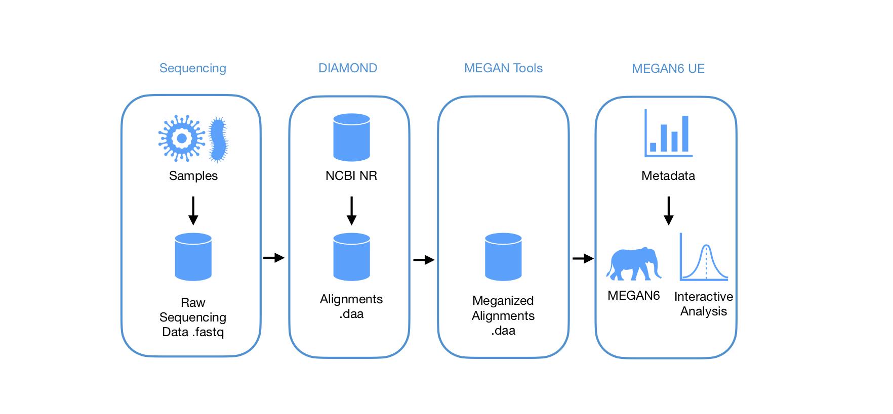 MEGAN workflow, Computomics, metagenomics