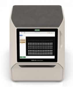 gel imaging, gel digitalization, GelDoc Go, Bio-Rad