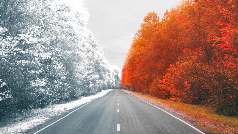 autumn winter 2020 biotech