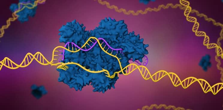 CRISPR, CRISPR-Cas9, genome-editing, gene therapy