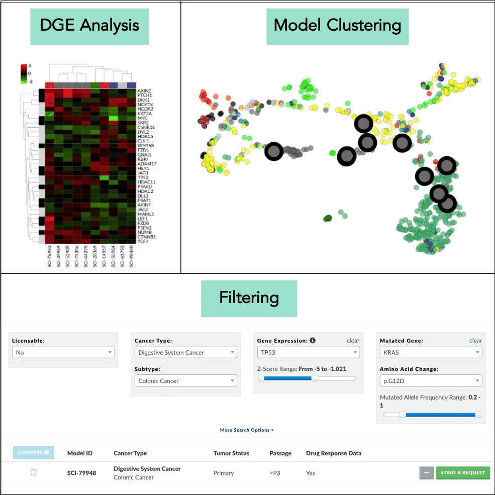 Disease Model Finder, Scientist.com, cancer drug discovery, AI